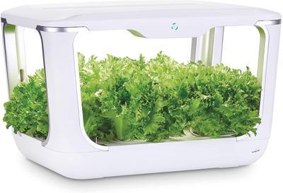 Serra idroponica Green Farm