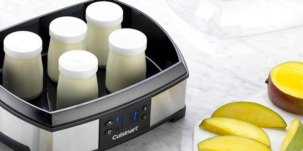 Come si sceglie la yogurtiera?
